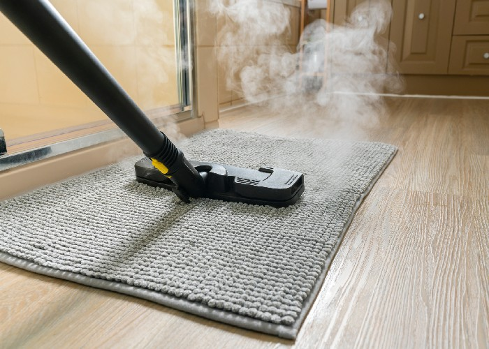 using steam for disinfecting rugs