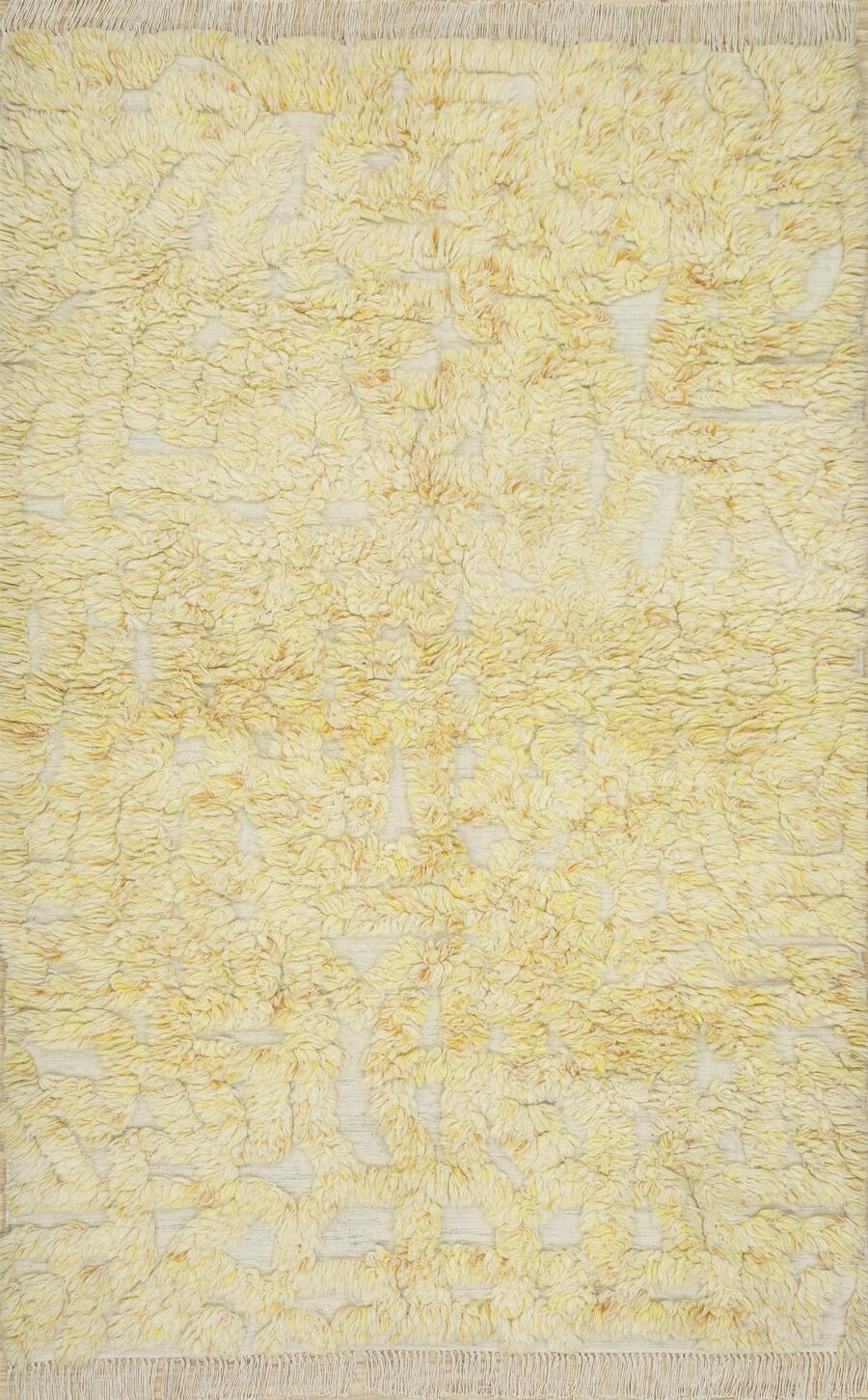 shag-rug-cleaning-method